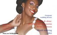 Black Brides Book