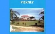 Buckra Massa Pickney by Enrico Stennett