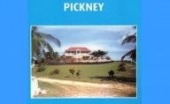 Buckra Massa Pickney by Enrico Stennett