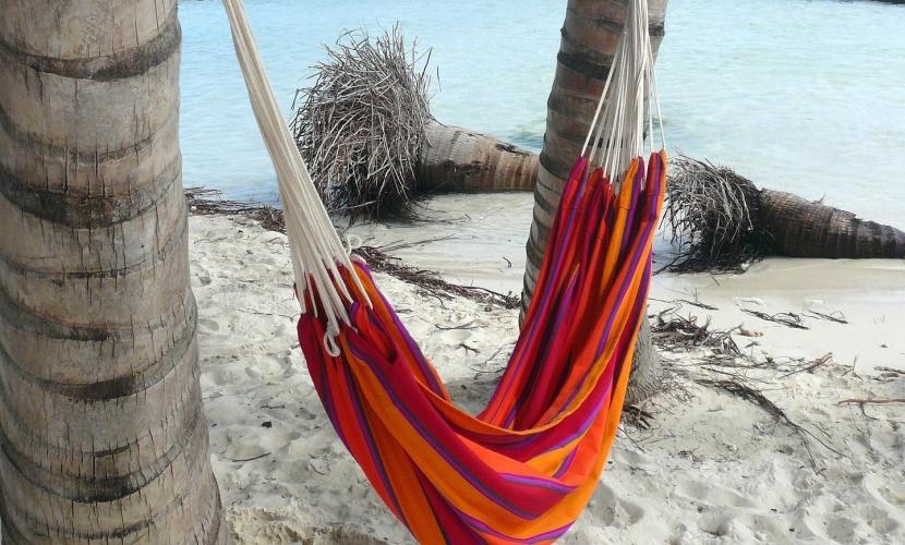 hammock by the ocean