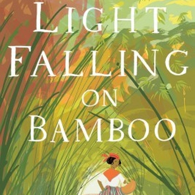 Light Falling on Bamboo