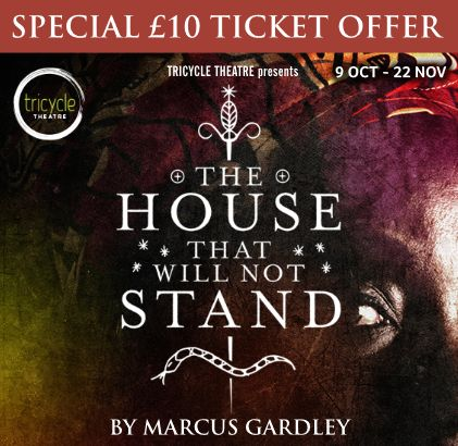theatre-the-house-that-will-not-stand