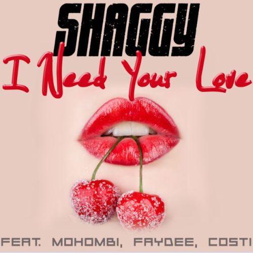 Shaggy Need Your Love feat. Mohombi, Faydee & Costi
