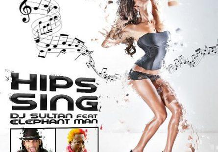 Dj Sultan ft Elephant Man Hip Sings