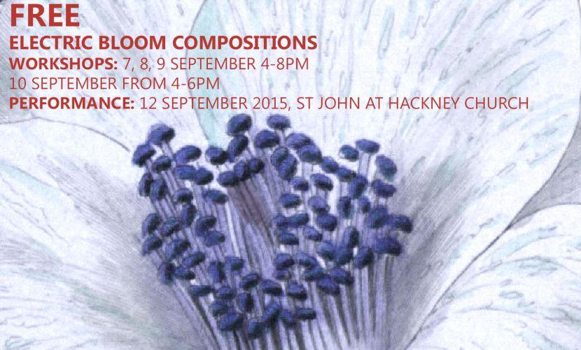 Electric Bloom Composition Workshop 2015