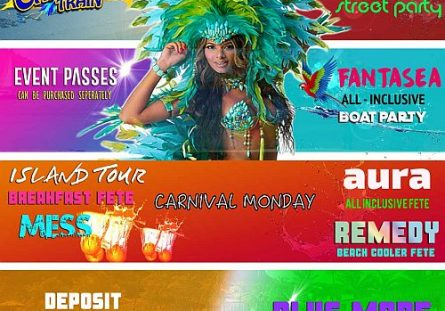 Soca Frenzy Carnival Train